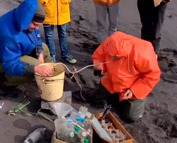 Побережье Камчатки и Курильских островов завалило трупами морской живности