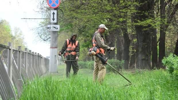 Покос травы - здоровье граждан и эстетика