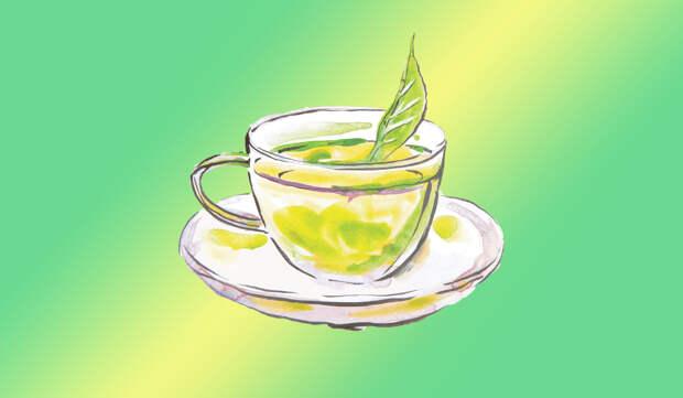 Зелёный чай —в чём польза? Чем зелёный чай лучше обычного чёрного?
