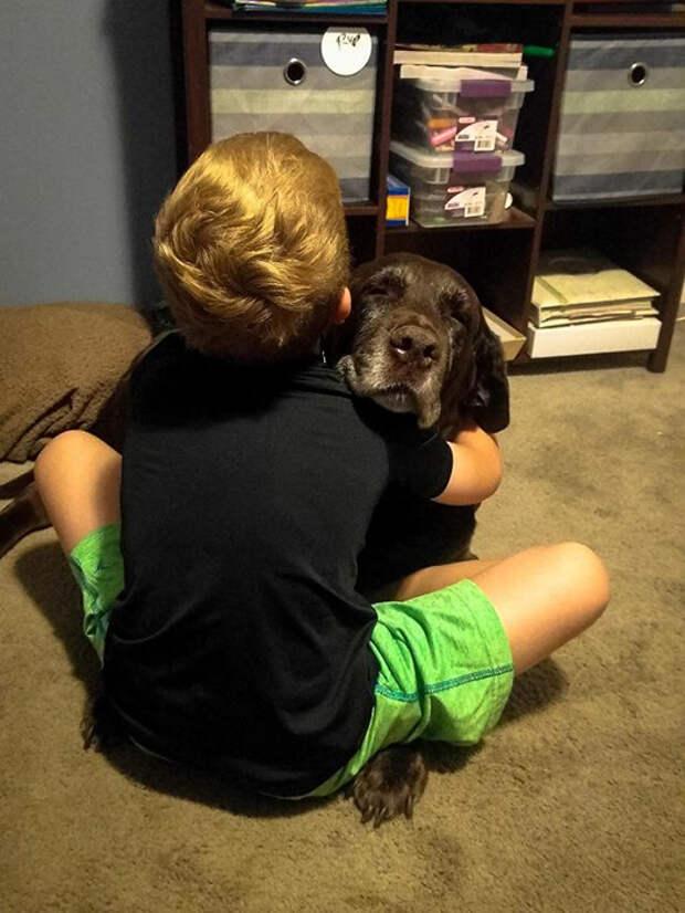 Мальчик всегда обнимал маму. Собаке же это сначала было не совсем удобно, но она смирилась.