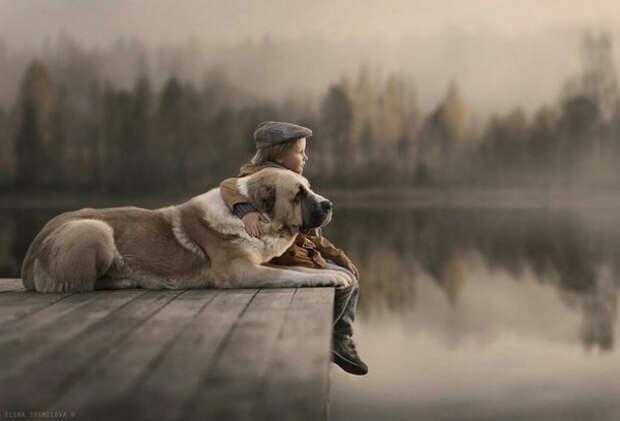 Мальчик и его пес. Рассказ, который трогает до глубины души...