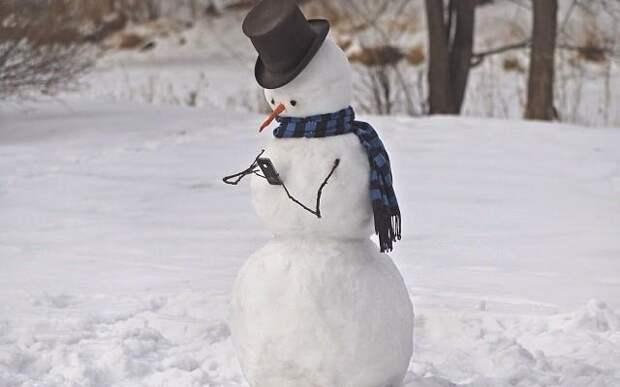Снеговик 21 века