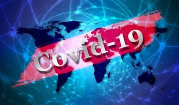 ВНижнем Тагиле засутки зарегистрировано 12 новых случаев COVID-19