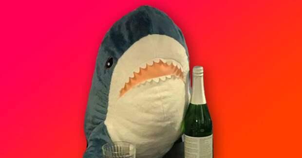 8 забавных фото акул из Икеи, которые ведут себя совсем как люди