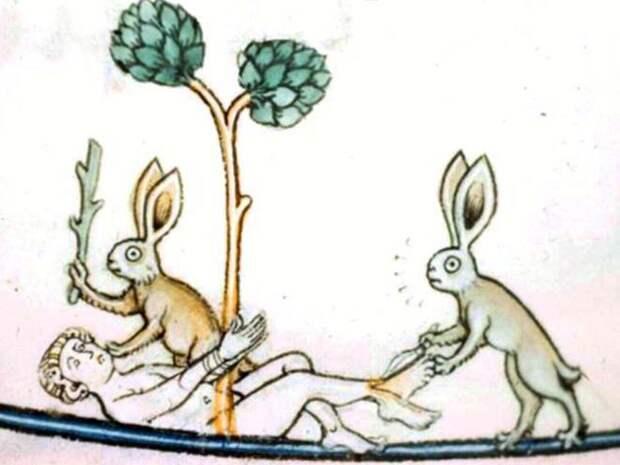20 кроликов-убийц из средневековых книг. Почему именно этих зверьков рисовали такими злобными