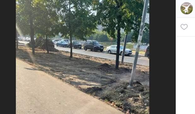 Газон на Новочеркасском восстановят в 3-м квартале – префектура ЮВАО