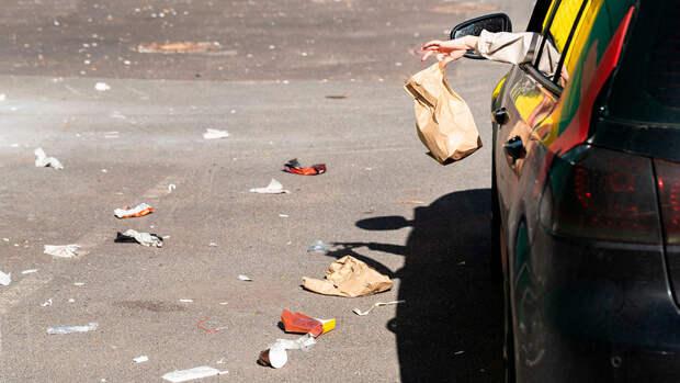 Автомобилистов могут начать штрафовать за незаконный сброс мусора