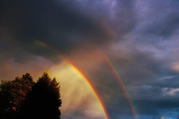 В Удмуртии жаркий вторник охладят кратковременные дожди