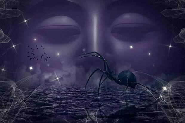 Приметы о паутине и пауках: полное собрание на все случаи жизни