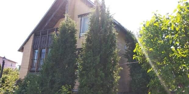 Как отгородиться от соседей по даче