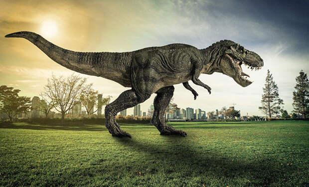 Ученые узнали, что на Земле в сумме жили 2,5 миллиарда тираннозавров