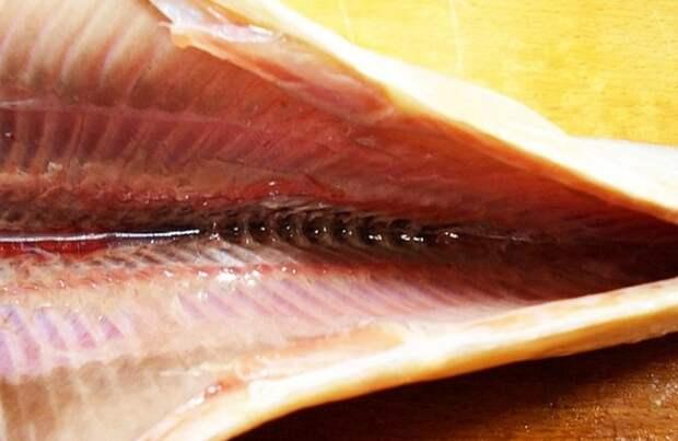 Следите за тем, чтобы брюшко селедки было тщательно вычищено / Фото: sovetclub.ru