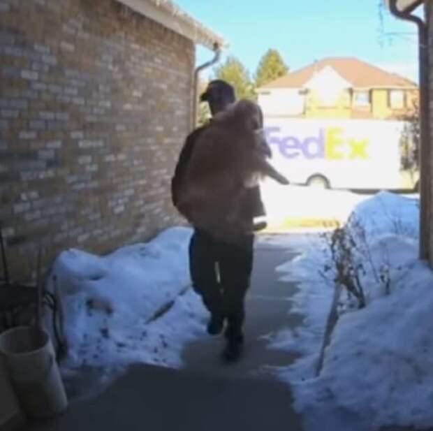 « С доставкой на дом!»: Собака сбежала, а через некоторое время перед дверями появился курьер с грузом в руках