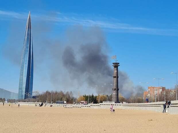 Рядом с «Лахта Центром» горит камыш, сообщают очевидцы. Дым видно из парка 300-летия