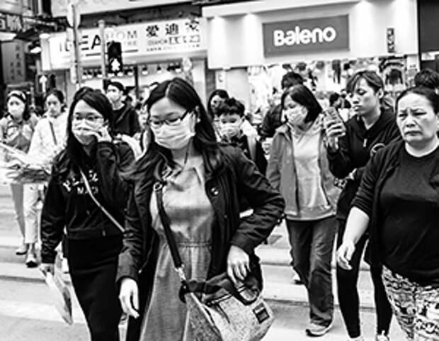 В Китае зафиксировали вирус SFTS, способный убить человека