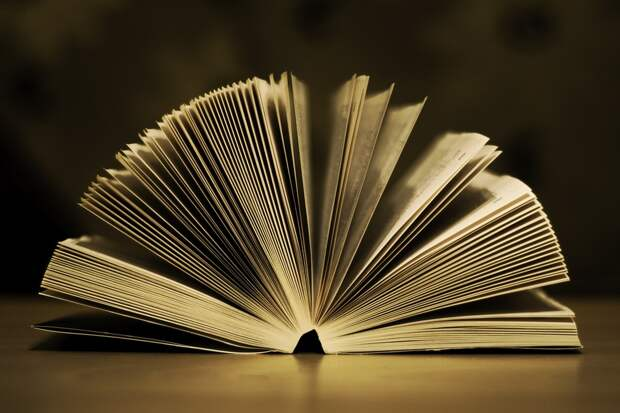 Книги Виктора Голявкина и Константина Паустовского возглавили читательский рейтинг библиотеки на Нижегородской.