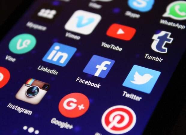 Политический активизм в соцсетях: формы и границы