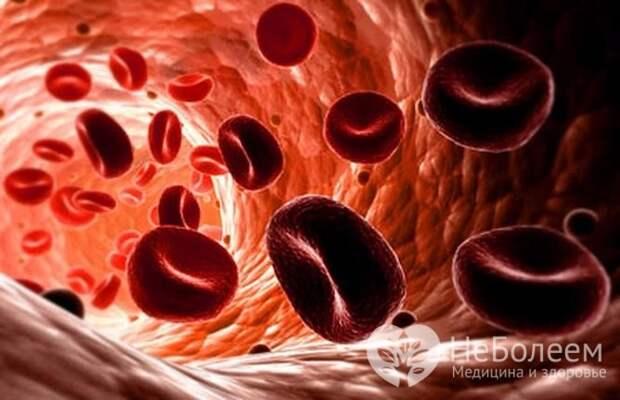 Количество эритроцитов в крови у ребенка повышается при обезвоживании