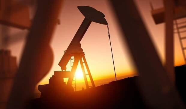 ОПЕК: пандемия уничтожила потенциал роста мирового спроса нанефть