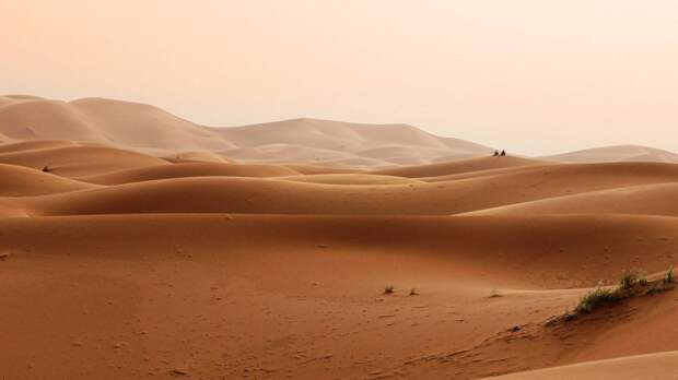 Украинские экологи заявили о скором превращении страны в пустыню