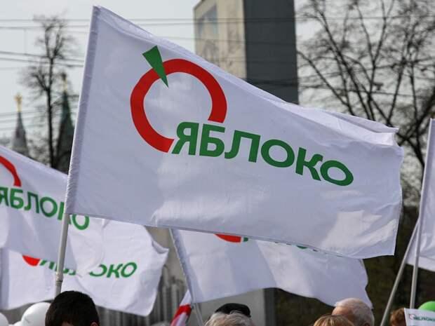 «Яблоко» без Ярославля