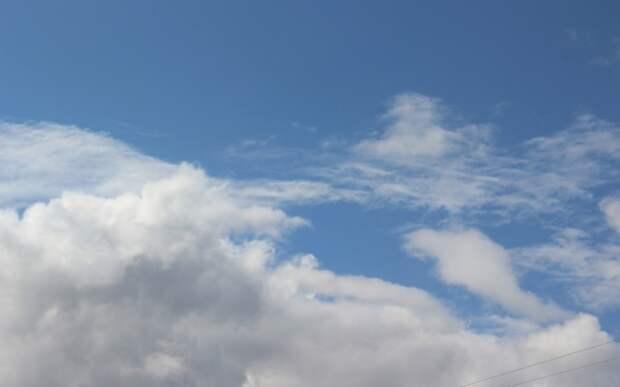 В Рязанскую область придёт жара до +33 градусов