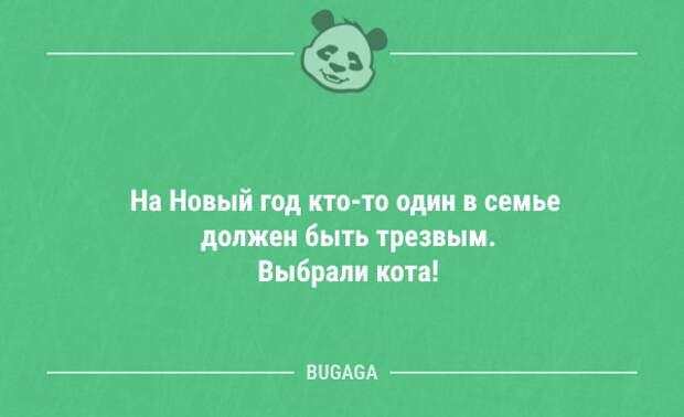 Свежие анекдоты на Бугаге (10 шт)