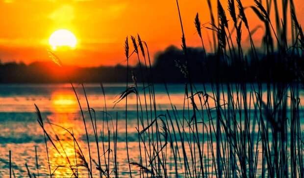 Летняя жара сохранится вРостове ввоскресенье