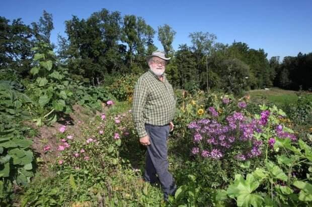 Кратерный сад от Зеппа Хольцера, или Как приобщиться к пермакультуре?