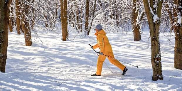 В Северном состоялась районная лыжная гонка