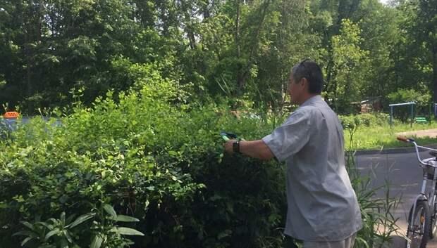 УК покосила траву и обрезала кустарник в микрорайоне Климовск