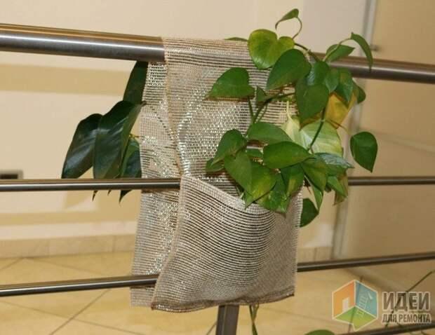 Для небольшого полезного растения место может найтись где угодно. Rossi, держатель для комнатных растений из металлической сетки.