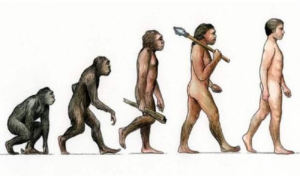 Антропологи обнаружили «мгновенные» изменения в эволюции человека