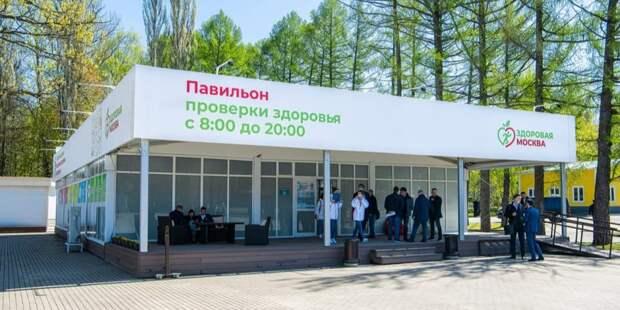 В ВОЗ оценили программу медосмотров в павильонах «Здоровая Москва». Фото: М. Мишин mos.ru