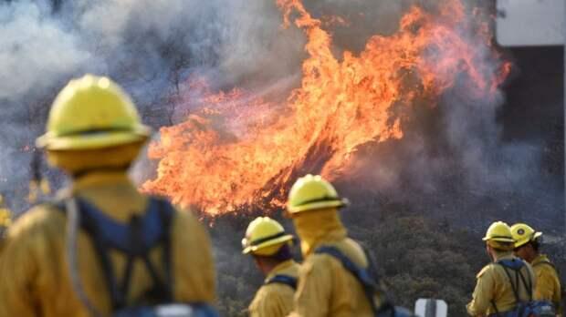В США заявили о почти 100 крупных пожарах в трёх штатах