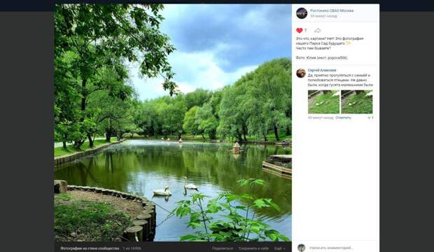 Фото дня: пара лебедей в парке «Сад будущего»