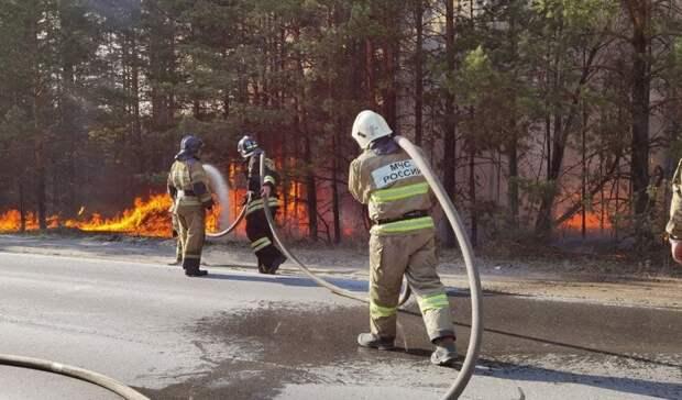 Природные пожары вТюменской области тушат 1055 человек и115 единиц техники