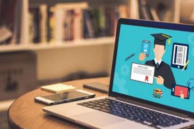 Дистанционный метод обучения в специализированных компаниях, школах