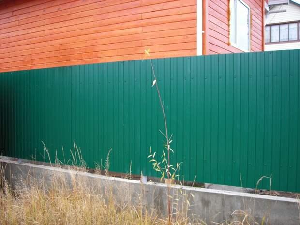 Почему между соседними участками не стоит ставить забор из профнастила?