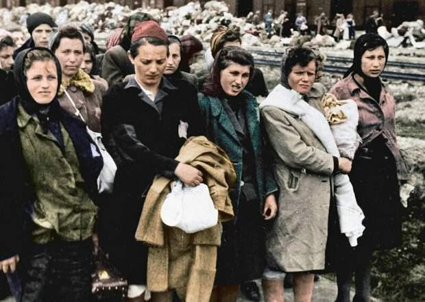 Фото Освенцима вцвете: так еще страшнее