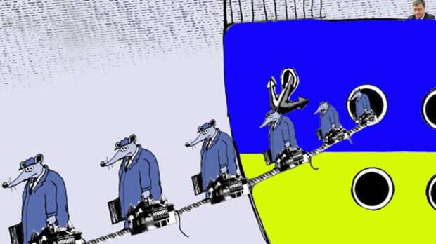 Алексей Куракин: Лайфхаки для свидетелей безвиза