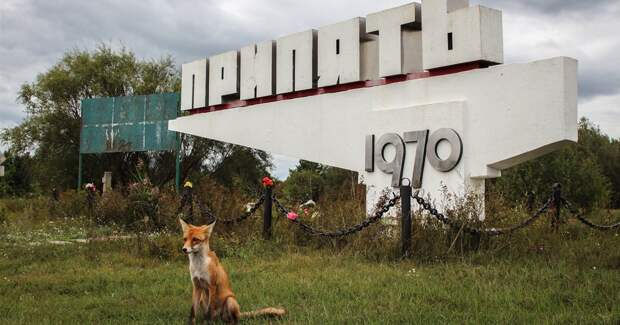 Чернобыль: путеводитель сталкера