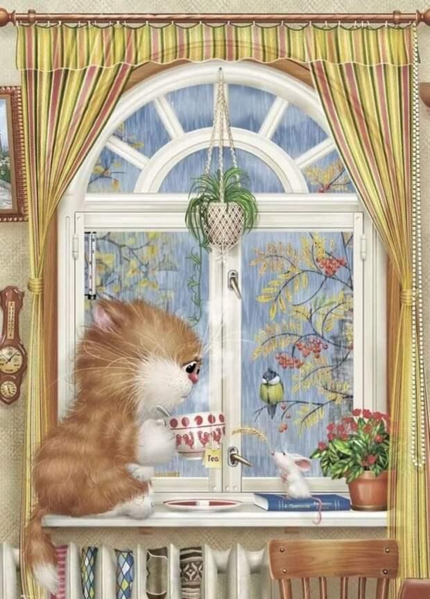 коты Алексея Долотова – 14