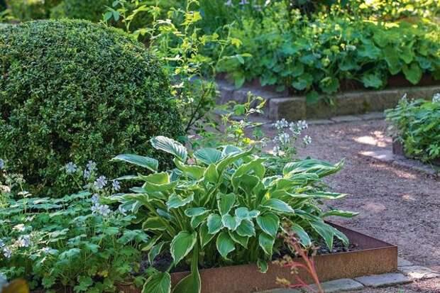 Профили из кортеновской стали все чаще используют для ограждения цветников. Они достаточно гибкие и идеально подходят для окантовки объектов самой замысловатой извилистой формы.