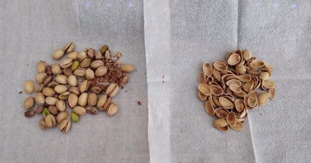 Красивые и полезные вещи можно сделать из простой скорлупы от орехов