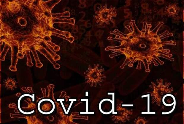 Российский ученый Супотницкий заявил, что пандемия коронавируса COVID-19 началась не в Китае
