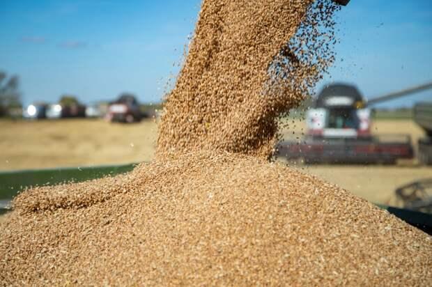 За 5 лет Удмуртия планирует увеличить экспорт сельхозпродукции почти в 7 раз