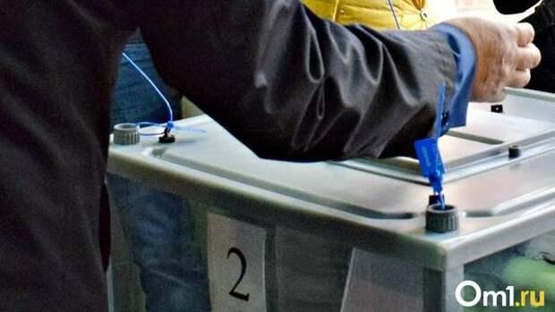 Выборы главы омского поселения закончились протестом депутатов