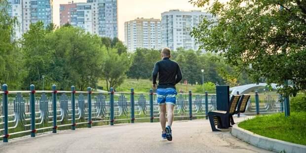 Проекты НКО дают возможность москвичам заниматься спортом бесплатно