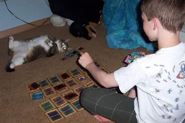 15 примеров бесконечного терпения животных к маленьким детям